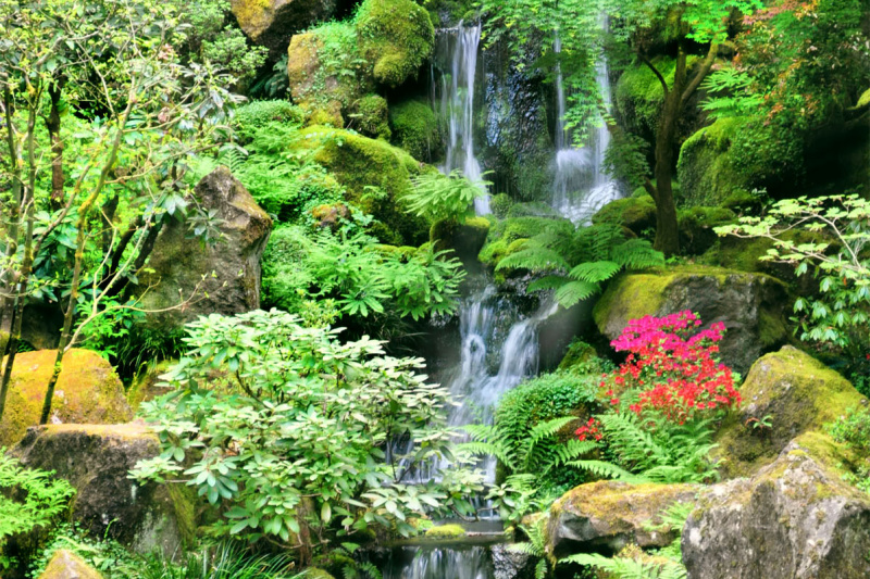 """Garden Falls"""