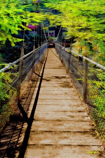 Across the Divide - Drift Creek Bridge
