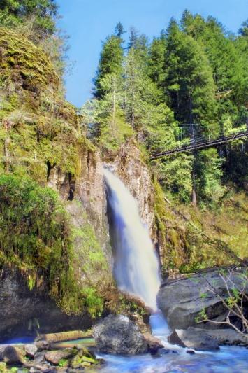 Trails End - Drift Creek Falls & Bridge