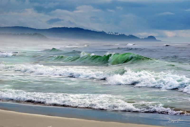 """Beach Day"""
