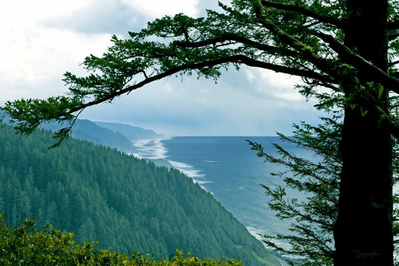 """""""Cape Perpetua View"""""""