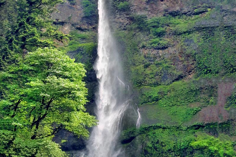"""""""Multnomah Falls"""""""