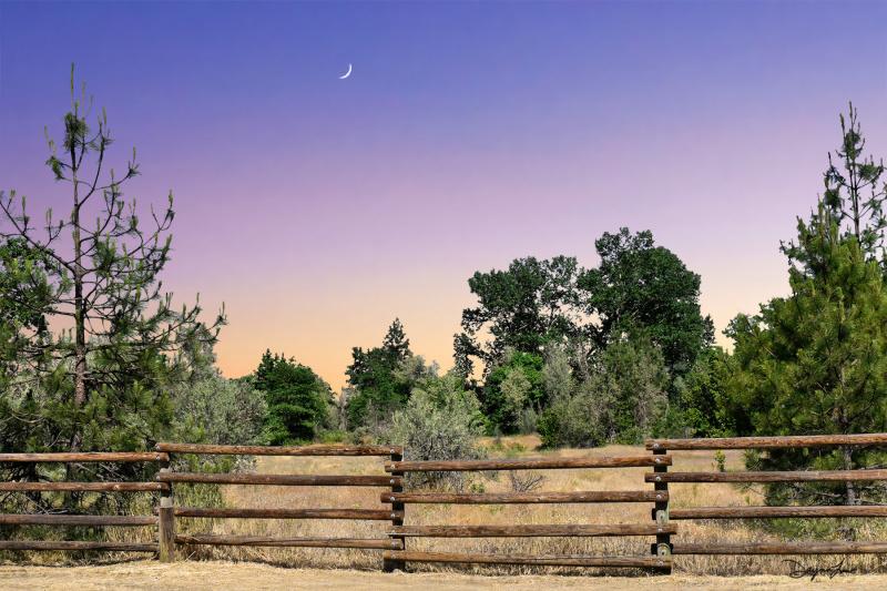 """""""Cowboy Sunset"""""""